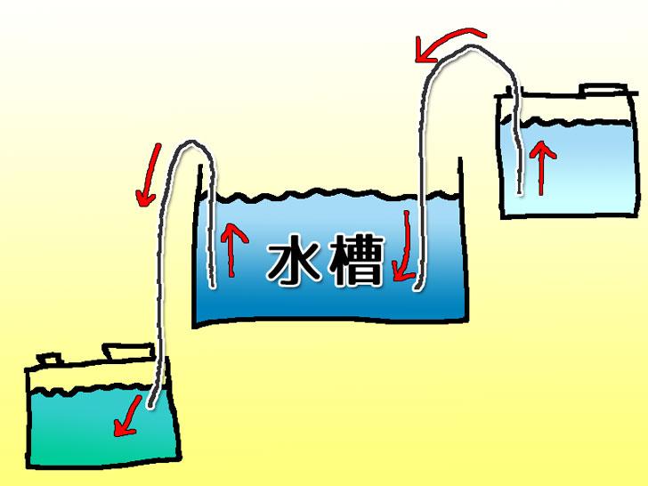 水替えシーンをイラスト解説