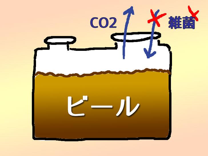 発酵栓イメージ