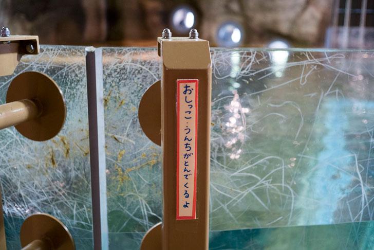 旭山動物園のカバ注意書き