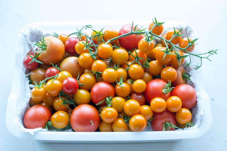 トマトもりもり
