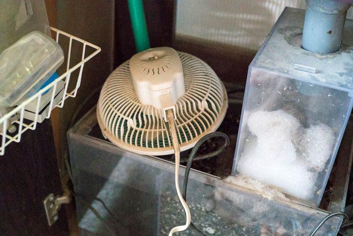 濾過槽に扇風機設置