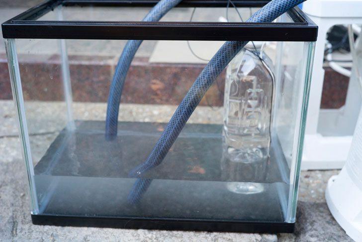 液肥入りの水が投入された様子